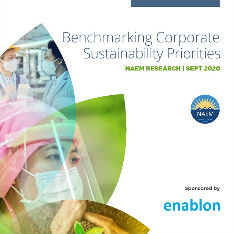 Benchmarking Corporate Sustainability Priorities