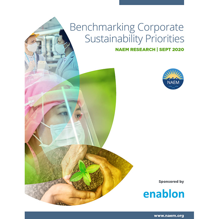 Benchmarking Corporate Sustainability Priorities